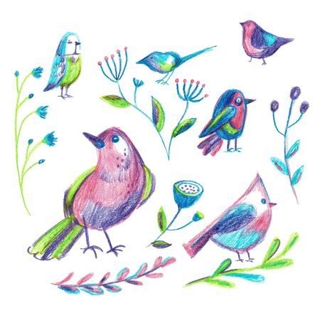 A set of birds and flowers, illustration