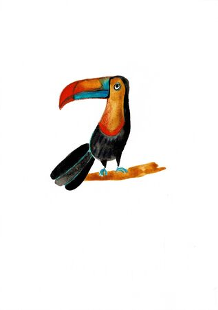 Watercolor illustration of a toucan bird. Watercolor hand drawn toucan. Bird hand painted illustration.Tropical animal isolated on white background