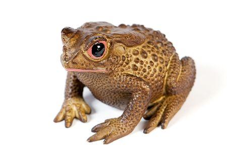 frog isolated over white background Stock Photo - 6166117