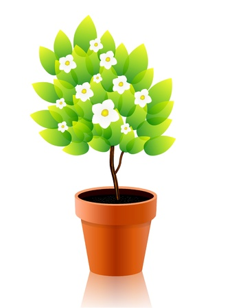 Vector illustration of growing plant with flower in pot Иллюстрация
