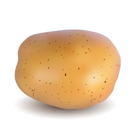 raw potato: Potatoes on a white background