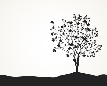 arboles blanco y negro: Vector silueta de árbol