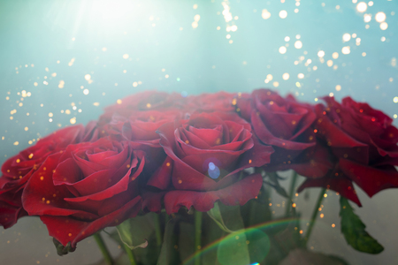 Beautiful bouquet of red roses on the blue sun flare background. Gift on all holidays. Birthday, Valentines, International Womens Day, love present.