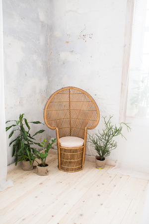 Wicker doll chair and a lot of greenery in the pot in the room with gray walls. Rattan chair and furniture on the wooden floor. Wicker chair.
