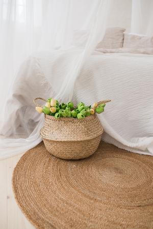 Wicker basket with green tulips. Home 版權商用圖片