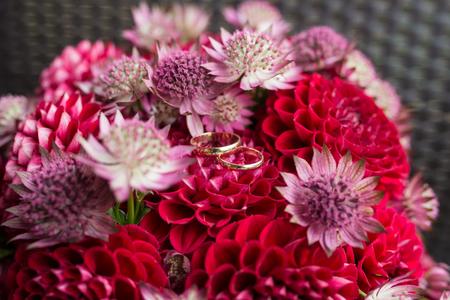 Golden wedding rings lie in a bud of red dahlia. Wedding rings lie on a flower bud 版權商用圖片