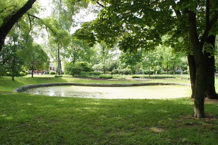 The small lake in the park. Summertime