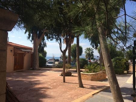 Beautiful embankment with trees, Aegina Greece. Green trees, embankment beautiful place for relax.