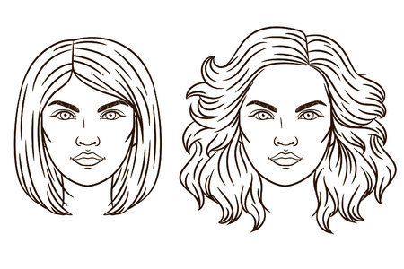 hair styling: Vector portrait of a girl. The girls face. Womens haircut. Fashionable womens hair styling. Different types of hair styling.
