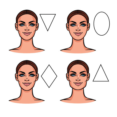Vector illustration of face types. Female face of various types of appearance