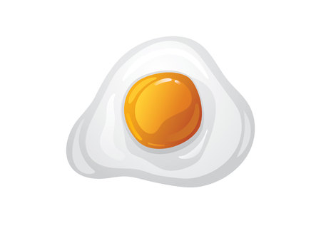 Color vector illustration in cartoon style. Fried egg top view. Scrambled eggs isolated from white background. Cooked chicken eggs for breakfast Ilustrace
