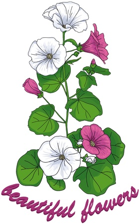 fresh flowers: stem with white and pink flowers and  green leaves with the words beautiful flowers