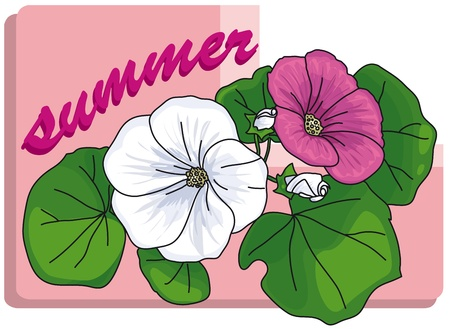 a small bouquet of white and pink flowers with leaves with the word summer on a light pink background