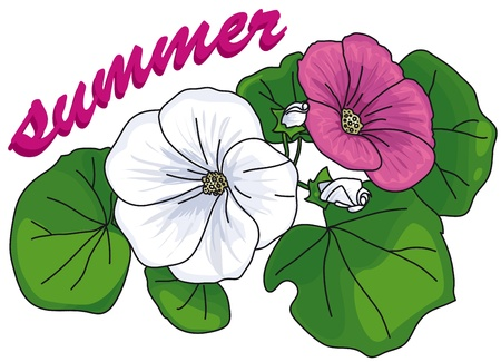 a small bouquet of white and pink flowers with leaves with the word summer