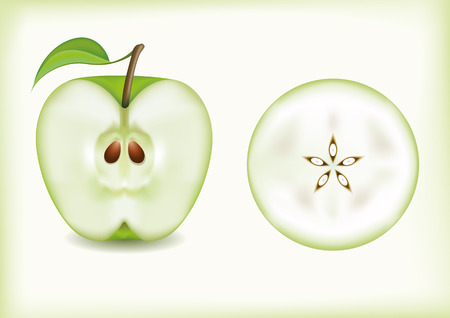 apple slice: apple slice vector
