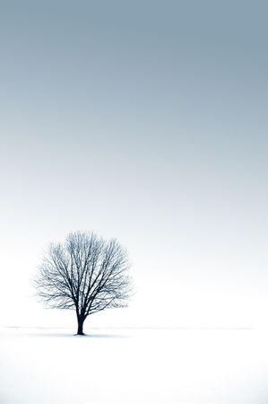 Alone Stock Photo - 272978