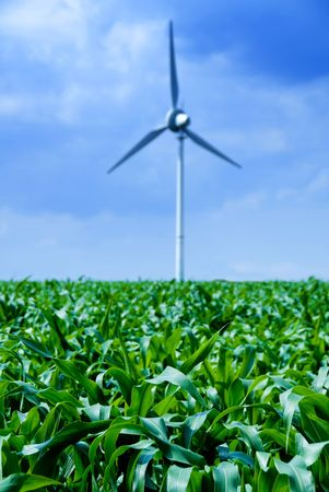 diesel generator: clean energy white wind turbine in corn field