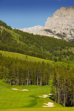 land scape: golf course land scape on green grass