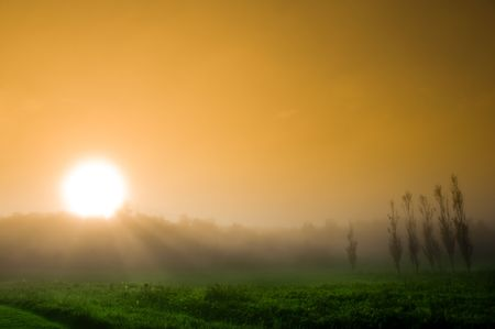 beautiful sunrise over a field in the countryside photo