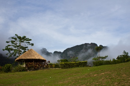 Thailand, Khao-sok in the mist photo