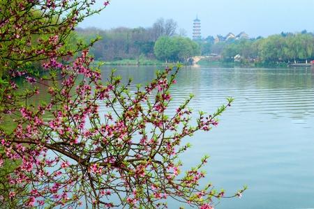 spring of park