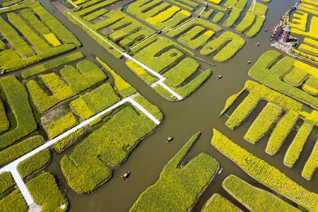 aerial photo of Thousand island rapeseed