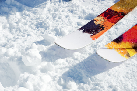 The front noses of a pair of skis on snow on a sunny day. The concept of winter sports in subjects and metaphors