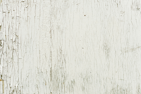 Textured background wooden surface painted with water-emulsion paint with small cracks in time. Rustic background