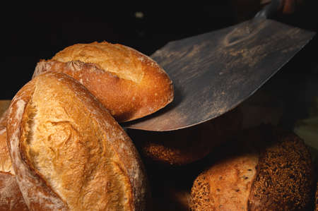 fresh artisan bread only from the oven on a baking shovel. Close-up. Appetizing fresh and healthy bread