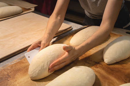 close-up of female hands kneading dough for making artisan bread at home bakery
