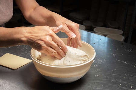 close-up of a bakers female hands dipping dough into a bowl of seeds and cereals before baking artisan bread at a home bakery
