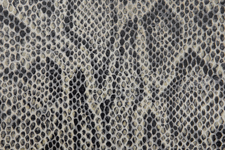 Snake leather texture, leather background