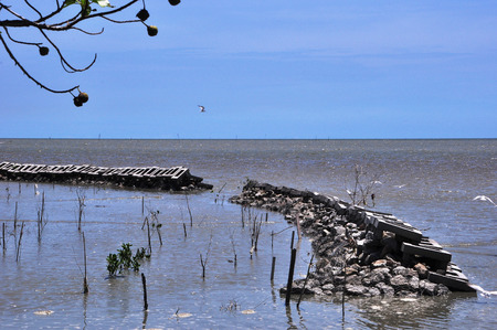 paysage marin: vue Seascape