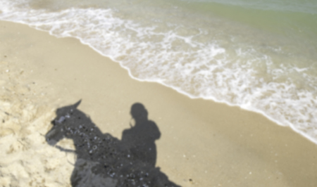 Shadow of woman or man riding horse at beach in blurred version.