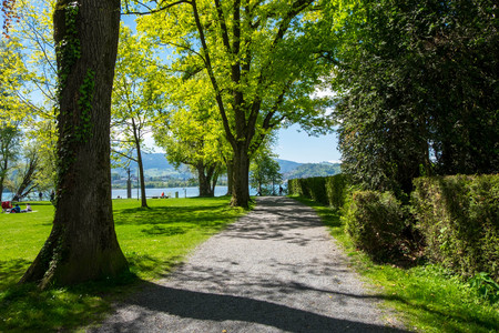 Lane in park leading to Lausanne lake, Switzerland. Stock Photo
