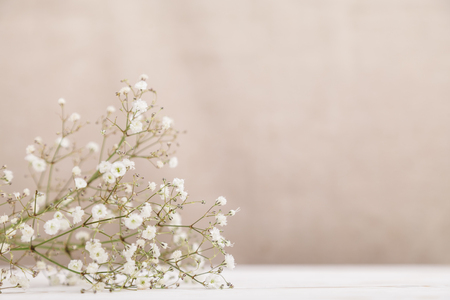 Small white flowers gypsophila on wood table at pale pastel beige background. Minimal lifestyle concept. Copy space.