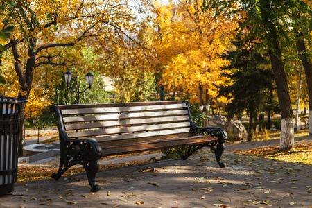 Eine leere Bank in einem Herbstpark vor dem Hintergrund gelber Bäume. Eine einsame Bank im Stadtpark. Indischer Sommer. Das Konzept der urbanen Erholung