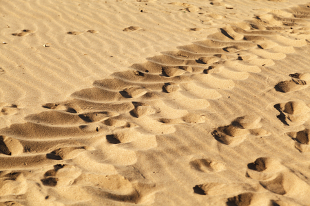 Human footprints in the sand on the beach, texture background. 写真素材