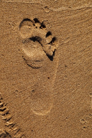 A single footprint imprinted in the sand on the beach. Footprint on the sand beach. Texture background. 写真素材