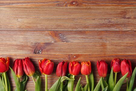 Fresh red tulips on a wooden background on Valentine's Day, mother's Day. Space for text, top view. Spring background with flowers