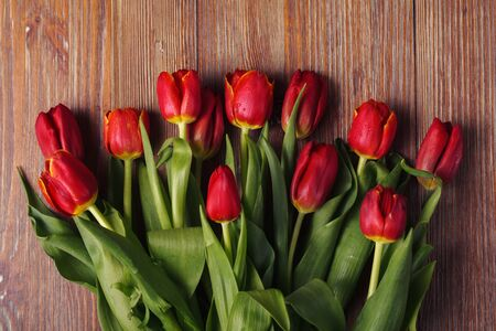 Fresh red tulips on a wooden background on Valentine's Day, mother's Day. Top view. Spring background with flowers 写真素材