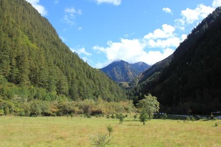 nature scenery: Nature scenery view
