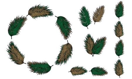 Set of elements from yellow and green spruce branches. Wreath. Pattern. Illustration