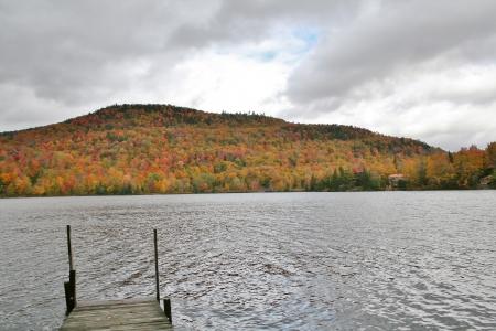 Dock with foliage view Фото со стока