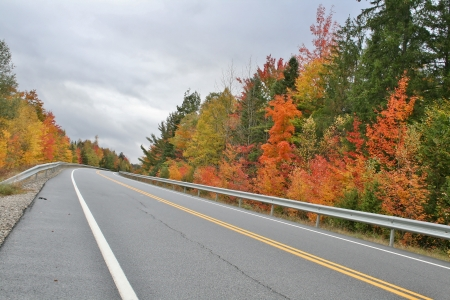 Road to Autumn Фото со стока