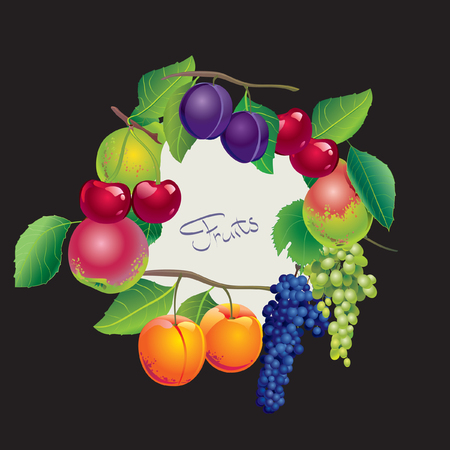 plums: Card with grapes, apple, pear, cherry, apricots and plums