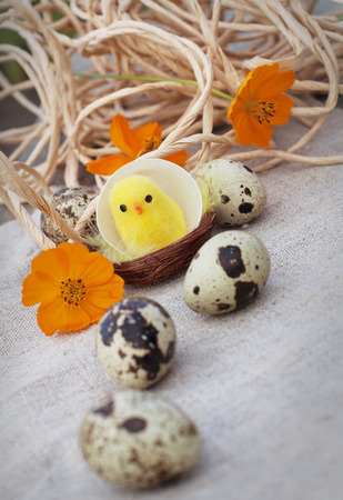 Easter eggs, chicken and flowers on canvas