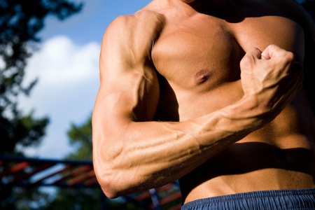 male torso:  young handsome man performs sport exercises to strengthen muscles outdoors