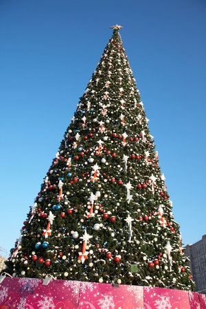 huge christmas tree: large outdoor Christmas tree in snow and ornaments Stock Photo