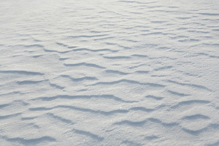 Fresh  snow background. texture, close-up photo